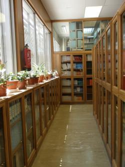 Colecciones Medicina