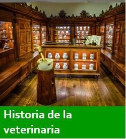 Historia de la veterinaria
