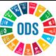 La BUZ y los ODS
