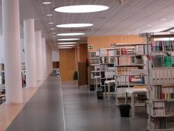 Hemeroteca Biblioteca Economía y Empresa (Campus Paraíso)